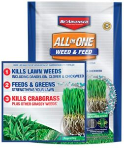 Best-Weed-and-feed