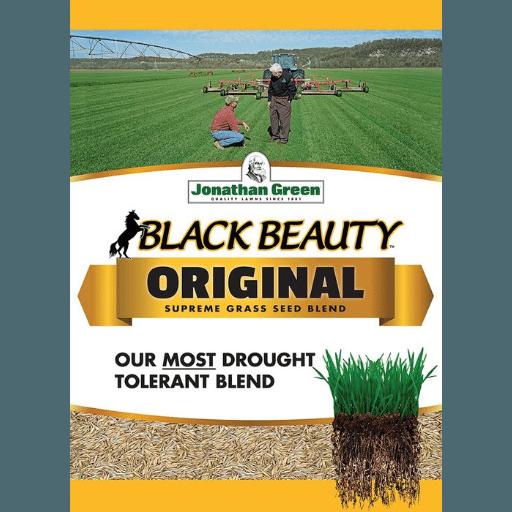 Jonathan Green 10315 Black Beauty Grass Seed Mix, 25-Pound