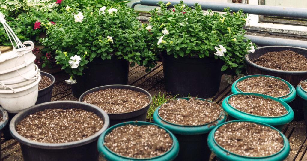pot-soil