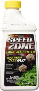 best dandelions killer products