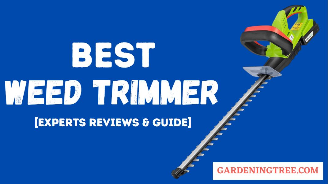 Best-Weed-Trimmer
