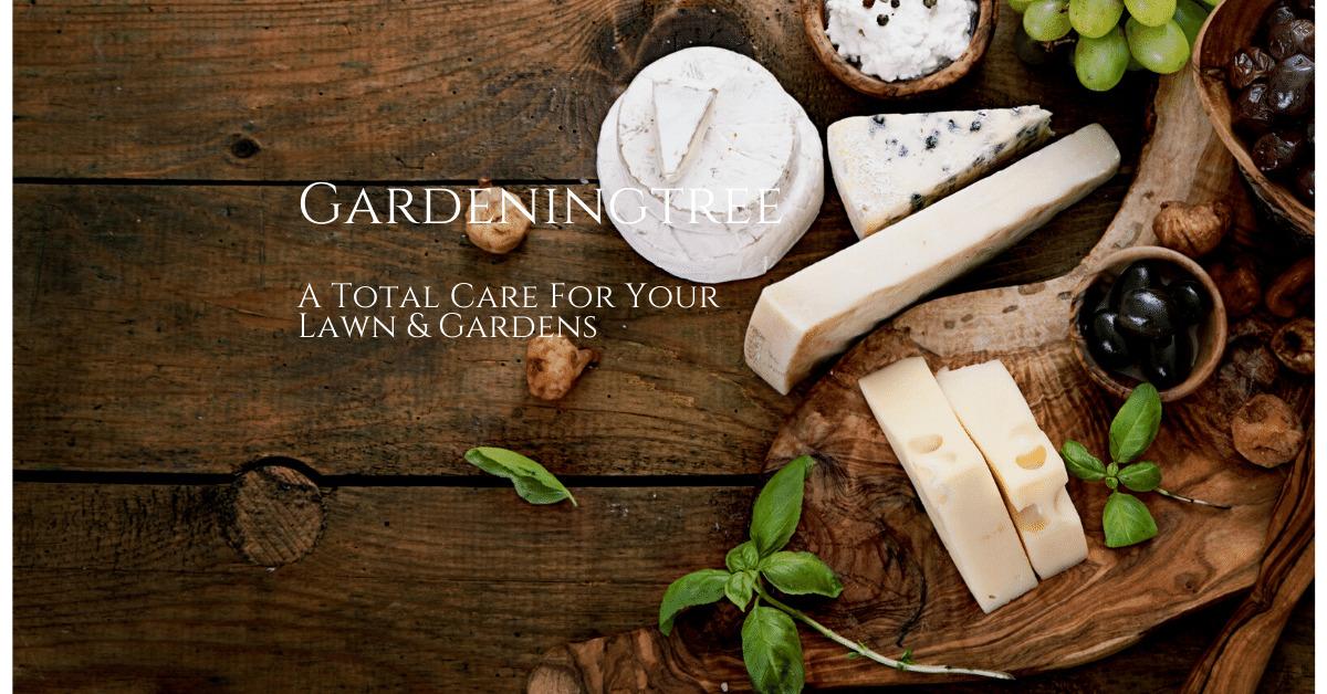 gardeningtreecom-7250a4.ingress-baronn.easywp.com