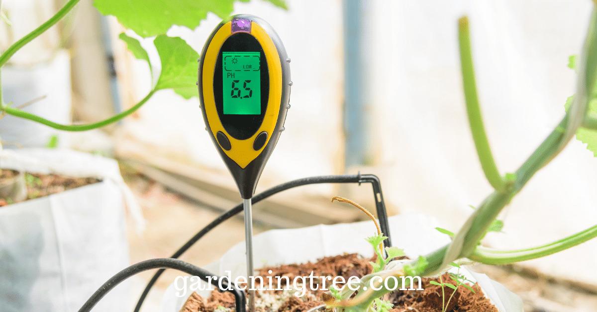 best-soil-ph-meter