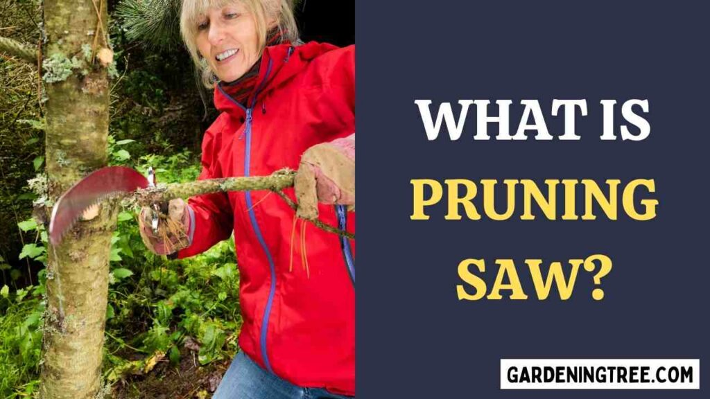 What is Pruning Saw?